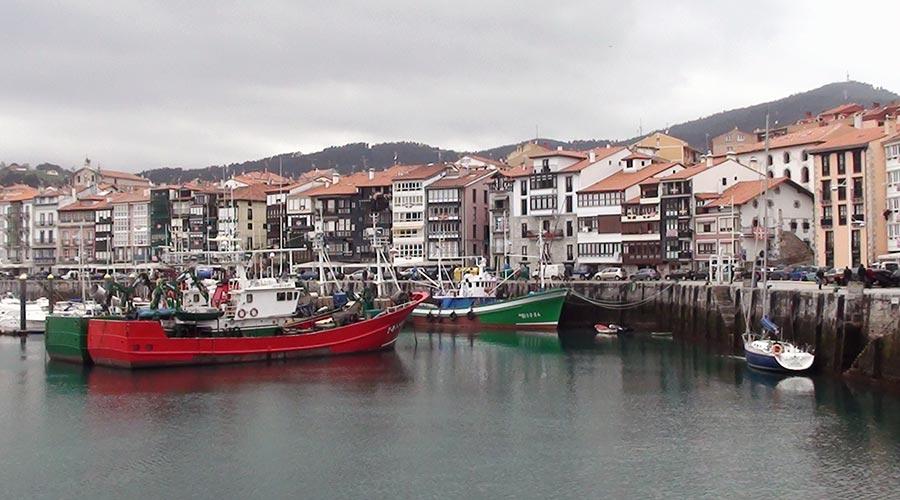 Lekeitio fishing port