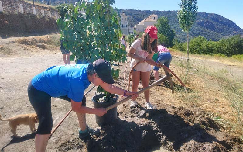 """Iniciativa """"Planta un árbol, plata futuro"""""""